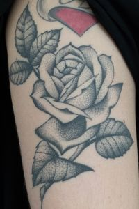 Rosa Traditional
